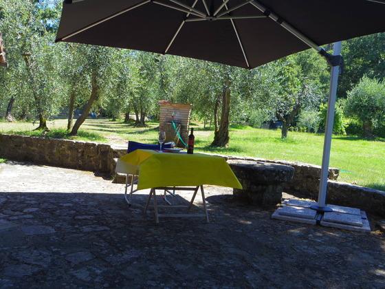 やっと夏!Orvieto