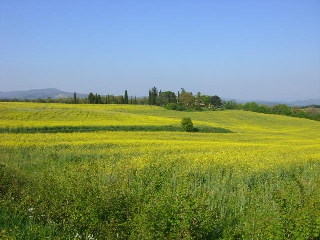 萌えるような春!Orvieto