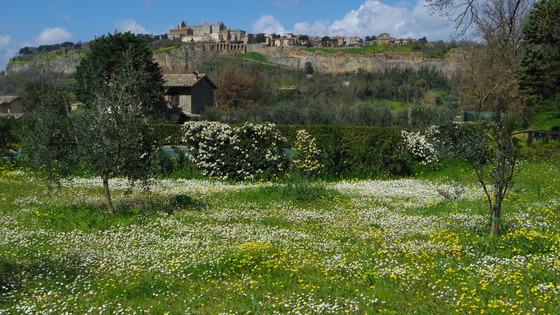 春の海! Orvieto