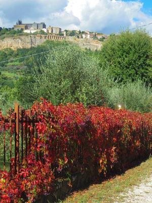 Orvietoの秋