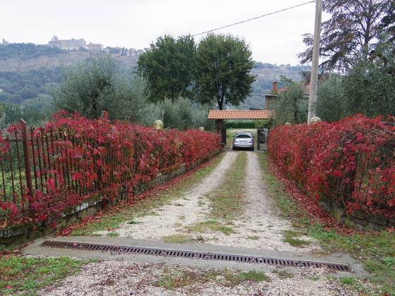 Orvietoも秋です。