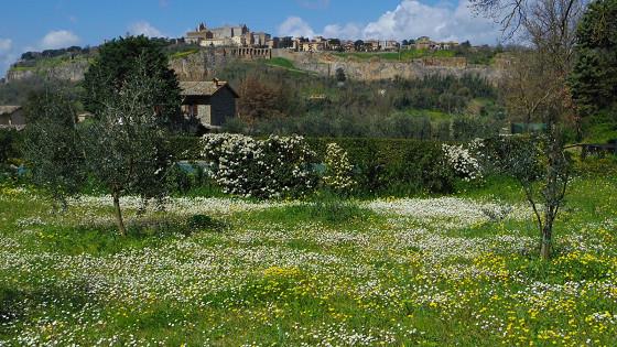 春らんまん Orvieto Il Riposino